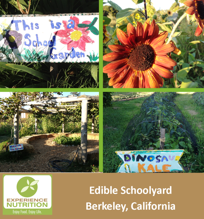 Edible Schoolyard Berkeley