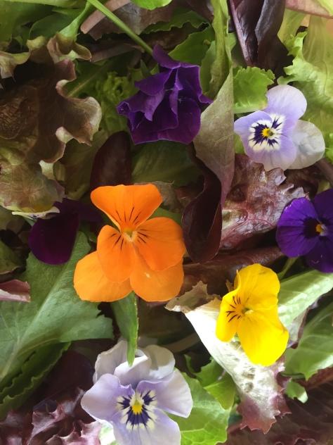B-salad-flowers-IMG_4388