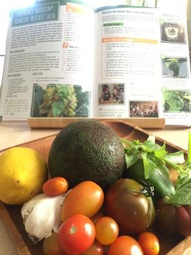 A-avocado-salsa-IMG_7768