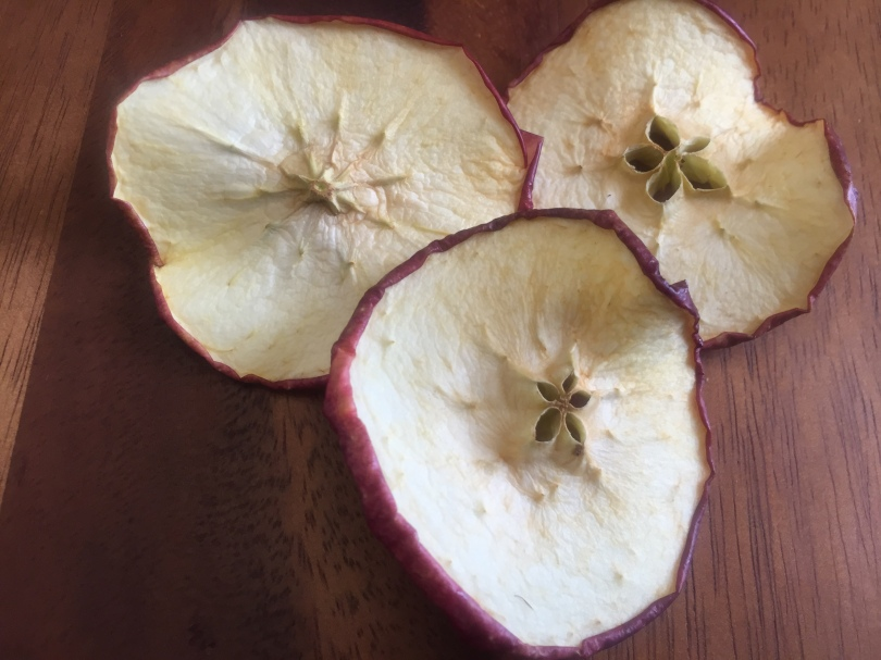 a-dehydrate-apple-img_0575