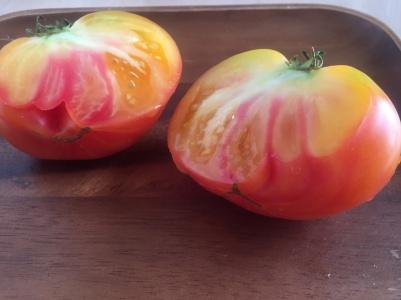 A-mungbean-tomato-salad-IMG_8875