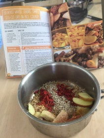 a-oats-img_9062