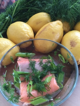 a-salmon-dill-img_1874