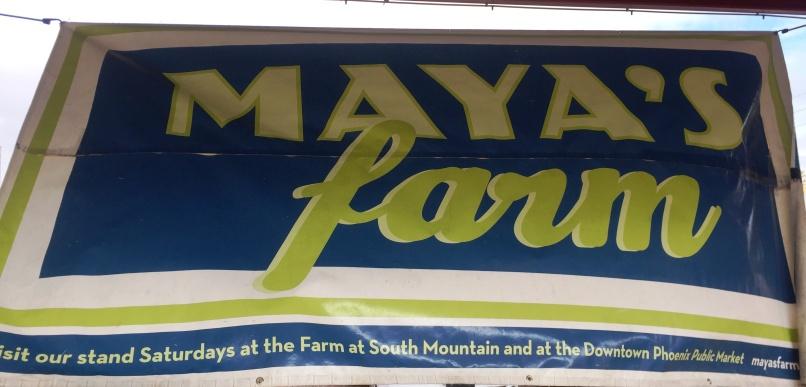 a-maya-img_7844