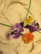 p-210-hummus-flowers-2016-img_4666