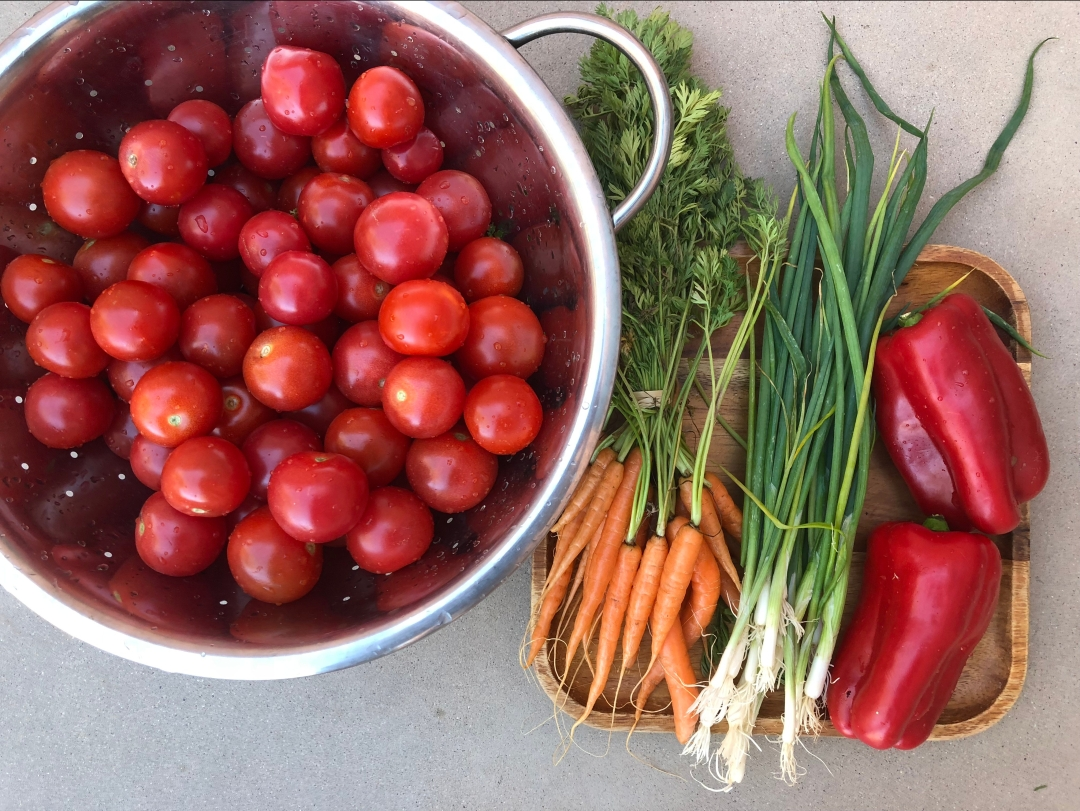 a-01-tomatoes-roast-img_2894.jpg