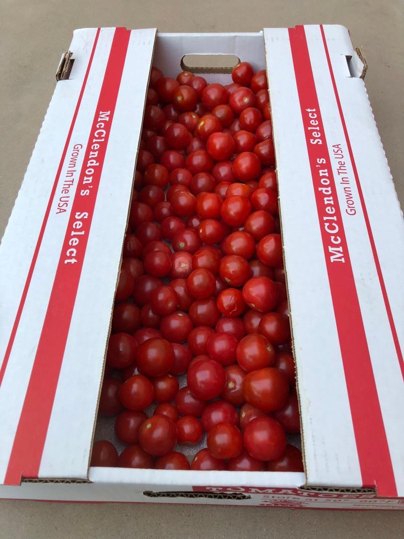 A-tomatoes-box-IMG_2786