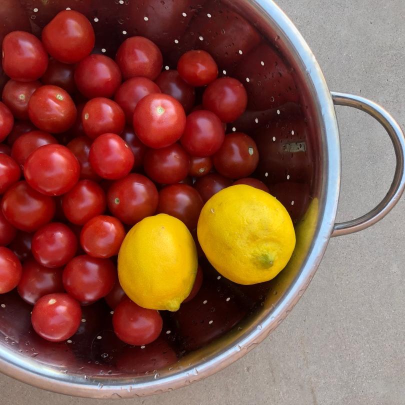 A-01-tomatoes-lemons-IMG_2926